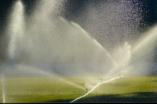 Choosing the Right Lawn Sprinkler System